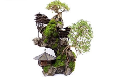 Landschap Bonsai