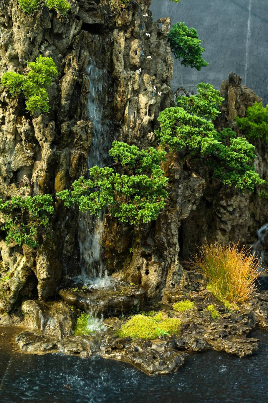 Bonsai landscape from India