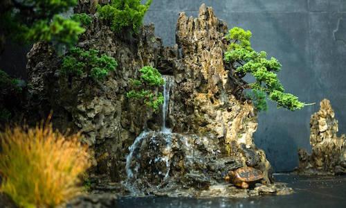 Het Bonsai landschap