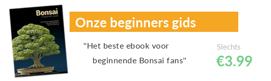 Bonsai beginners gids, eBook