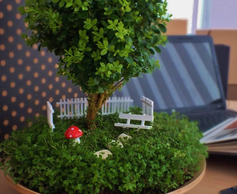 Miniature bonsai garden