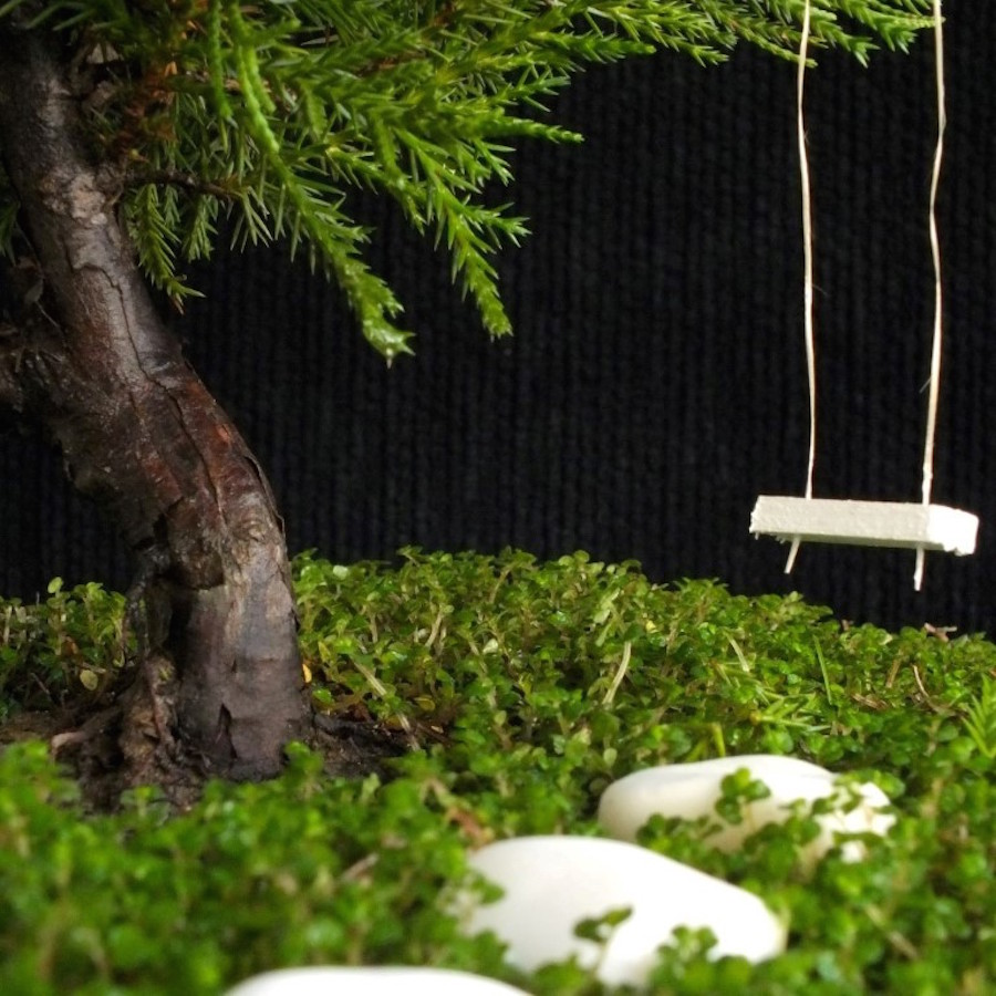 Bonsai swing