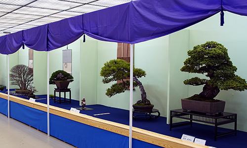 Taikan Ten tentoonstelling 2018