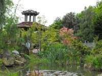 Welk soort steen voor rotsbeplanting bonsai forum for Substraat betekenis